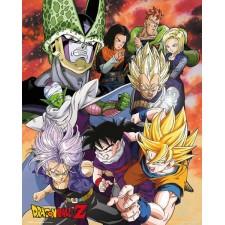 Dragon Ball Set de 5...