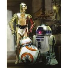 Star Wars Set de 5 Pósteres...