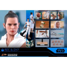 Rey and D-O Sixth Scale...
